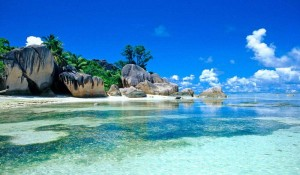 Стоимость Путевки на Сейшельские острова - Анализ Предложений
