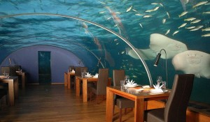 Подводный Ресторан на Мальдивах — Особенности