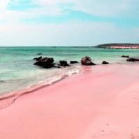 Розовые Пески Багамские Острова