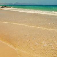 Канарские Острова Горящие Туры – Анализ Предложений