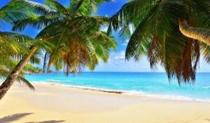 Сейшельские Острова, Когда Лучше Ехать - Советы Туристов