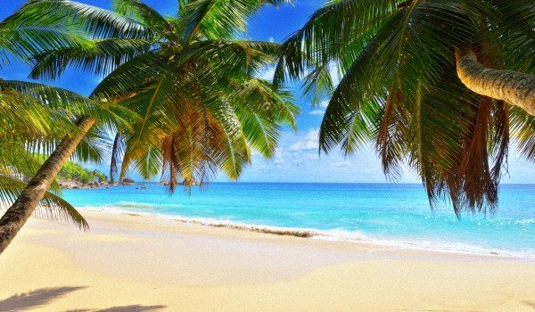 Сейшельские-острова-когда-лучше-ехать