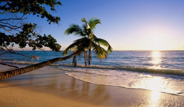 Стоимость-путевки-на-Сейшелы