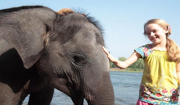 Шри-ланка-отдых-с-детьми-Особенности