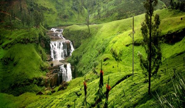 Отдых-Шри-Ланка-цены-на-туры-2014