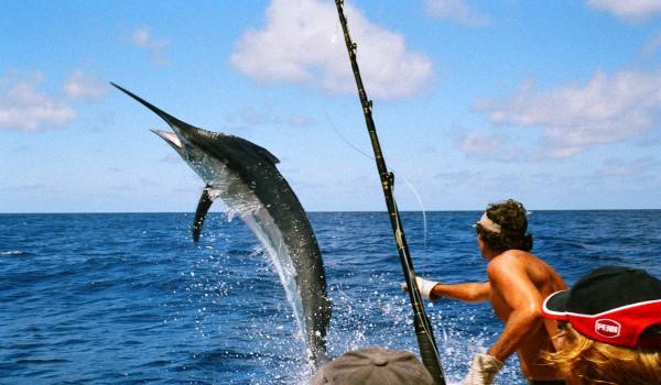 Рыбалка-на-Маврикии