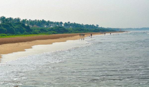Где лучше отдыхать в Шри-Ланке