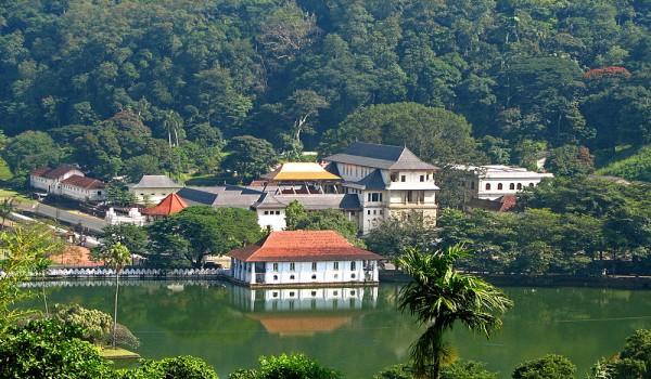 На Шри-Ланку дикарем