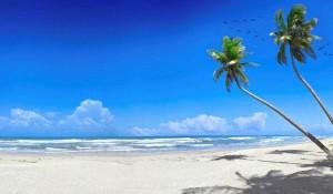 Багамские Острова Отзывы Туристов об Отдыхе