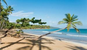 Доминикана, Где Лучше Отдыхать Отзывы