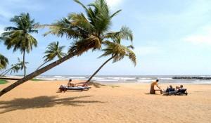 Южное Побережье Шри-Ланки - Особенности Отдыха