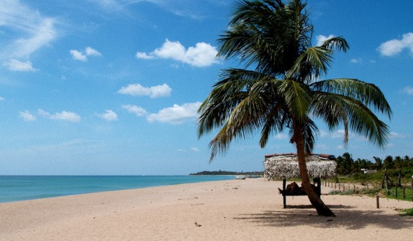 Лучшие пляжи Шри-Ланки по отзывам туристов