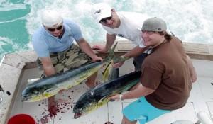 Рыбалка в Доминикане - Все Нюансы