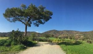 Удивительная Природа Кипра Представлена