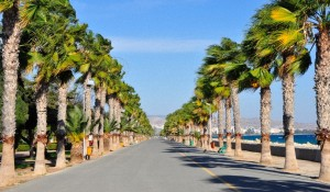 Экскурсии на Кипре, Настоящие Цены 2015
